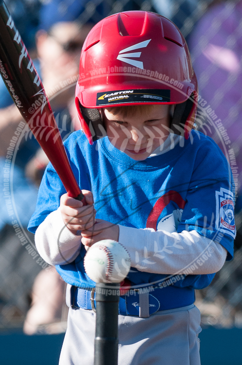 T-BALL - Cubs vs Red Sox
